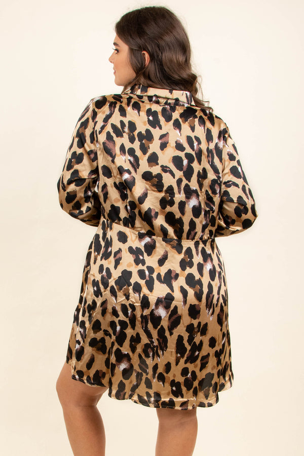 dress, short, long sleeve, button down, brown, black, leopard, shiny, comfy, fall, winter