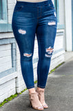 Memory Lane Jeggings, Denim
