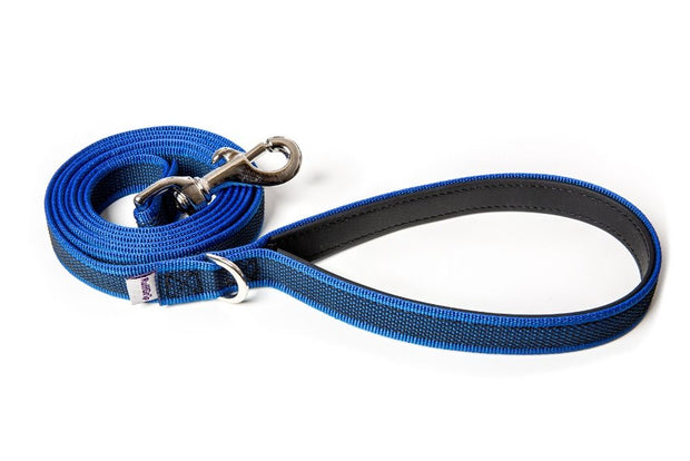 splash-dog-leash-blue