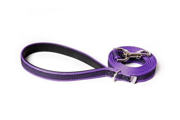 splash-dog-leash-purple