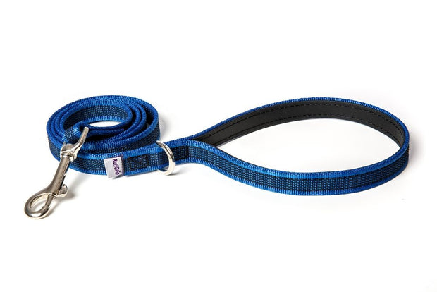 small-medium-dog-leashes-blue