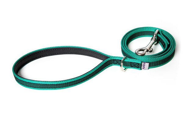 small-medium-dog-leash-green-handle