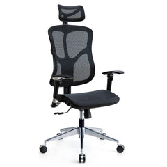 Valencia Ergonomic Office Chair