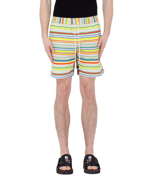 Multicolor Striped Swim Shorts