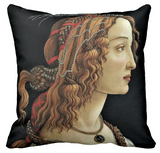 Renaissance Pillow Covers
