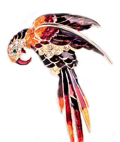 Exotic Parrot Brooch