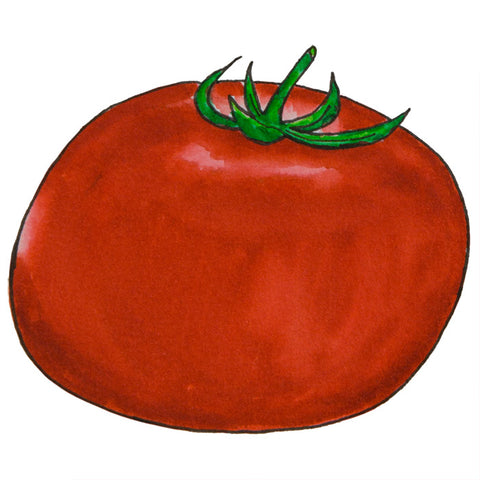 The Tomato Illustration Designs - a tad and more