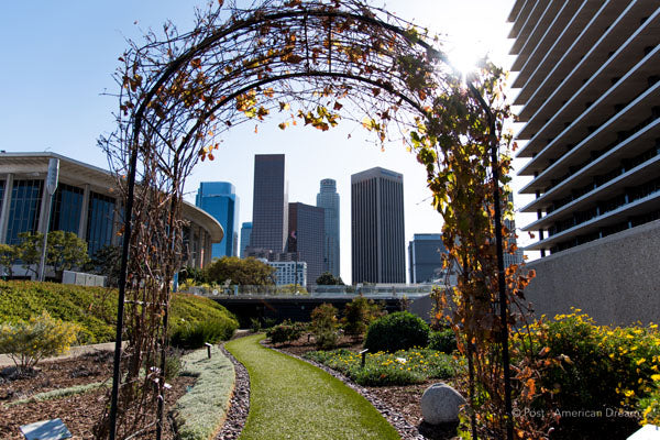 "Limited Edition Photo Print: ""The Arch at LADWP"""