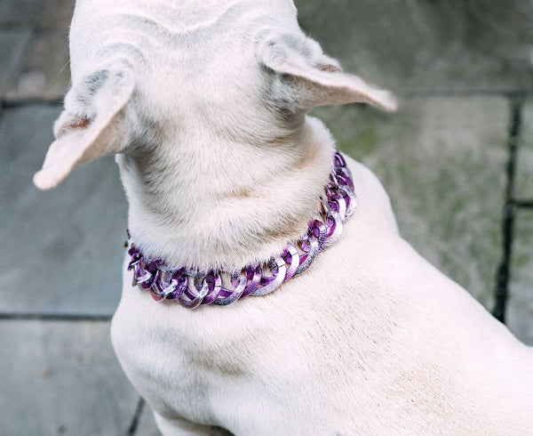 "Dog Collar ""The Pink"""