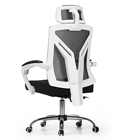 Hbada Ergonomic Office Chair - Reclining with Lumbar Support