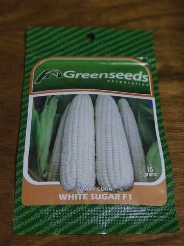 Greenseed: Waxy Corn