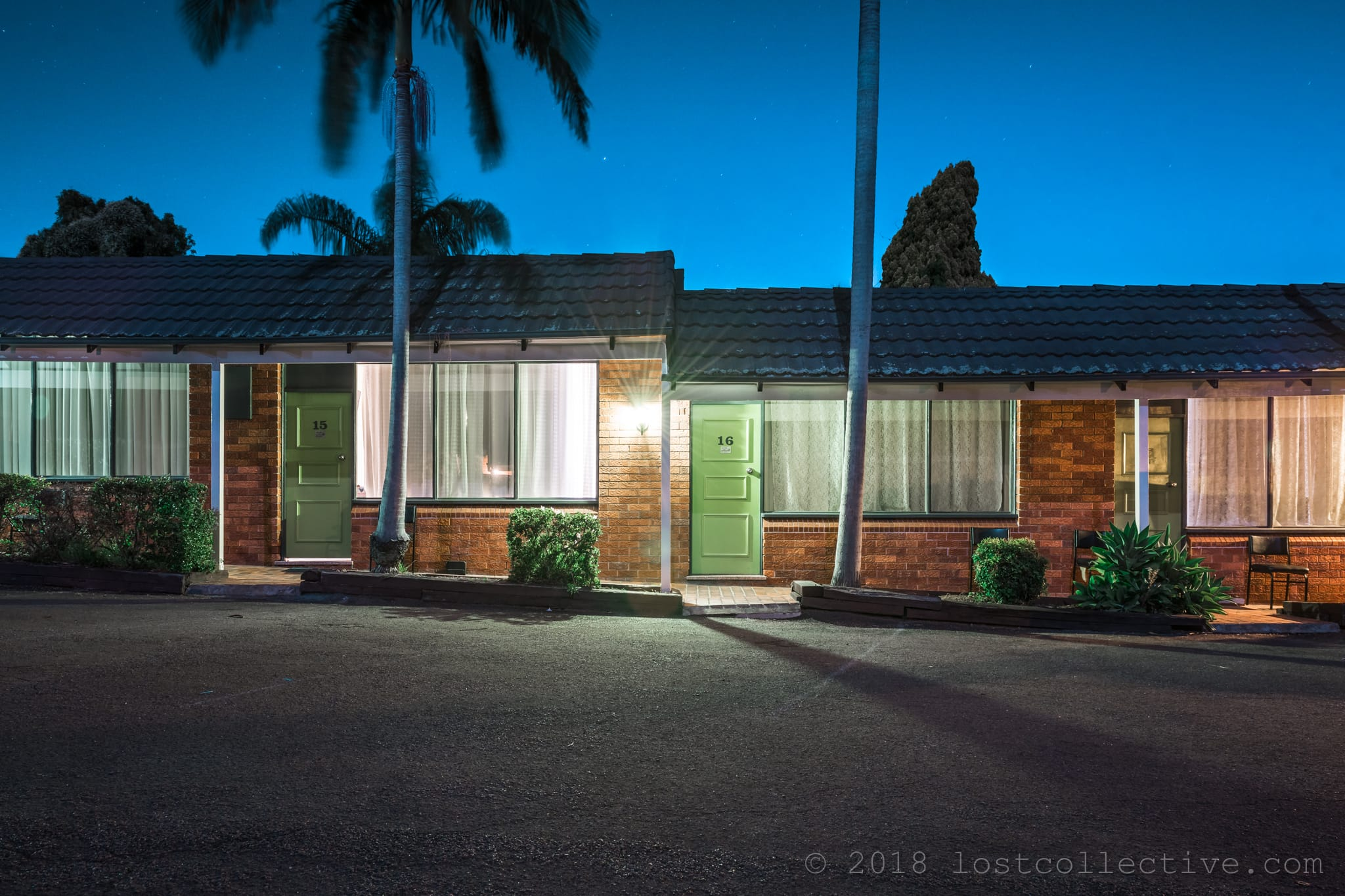 a motel with palm trees at night