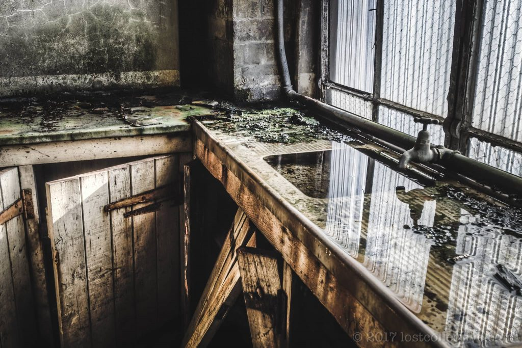 a dirty sink in white bay power station full of rainwater - creators - lost collective
