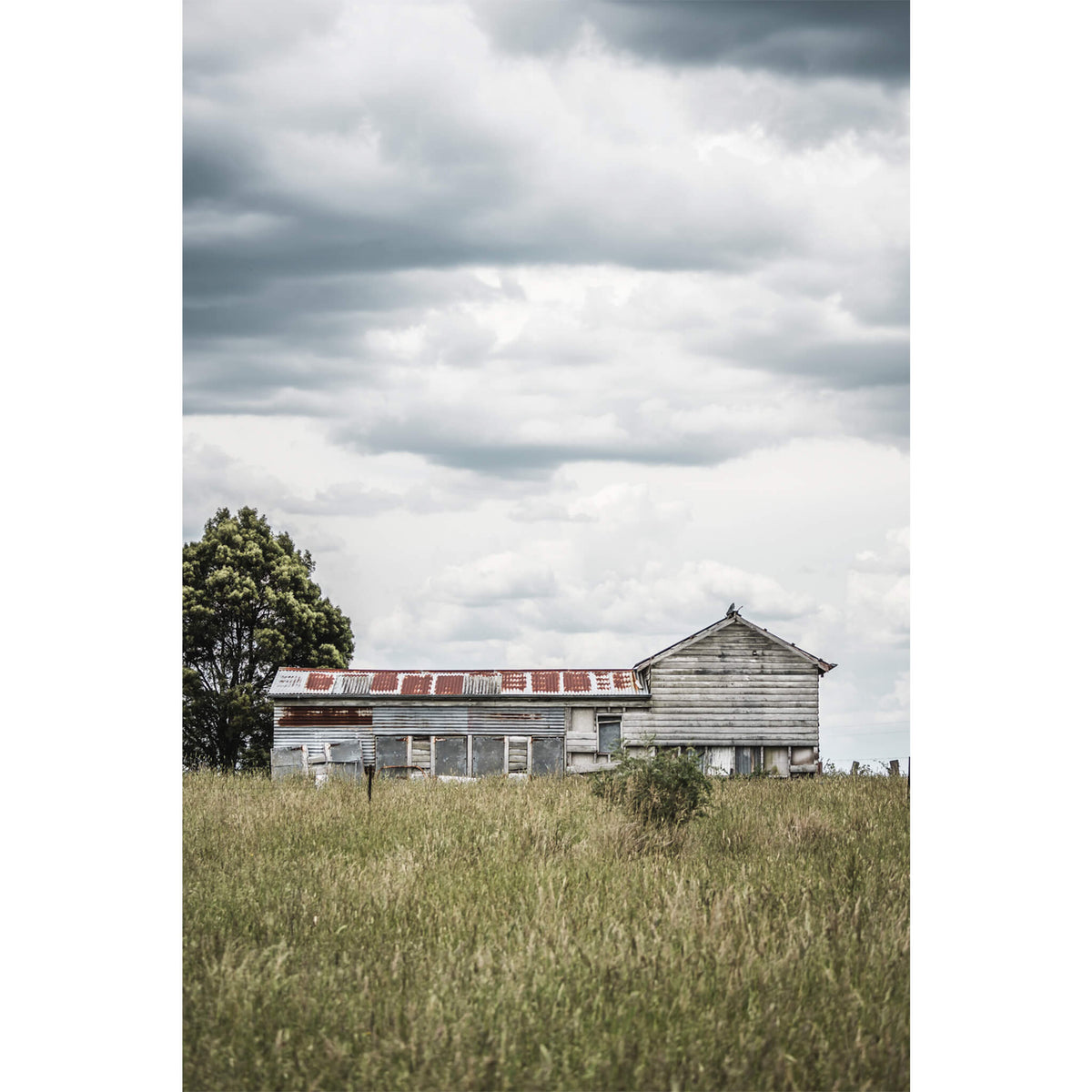 Farm Shed | A Place to Call Home Fine Art Print - Lost Collective Shop