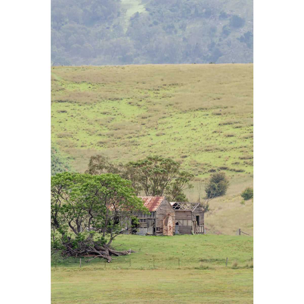 Homestead Over The Hills | A Place to Call Home