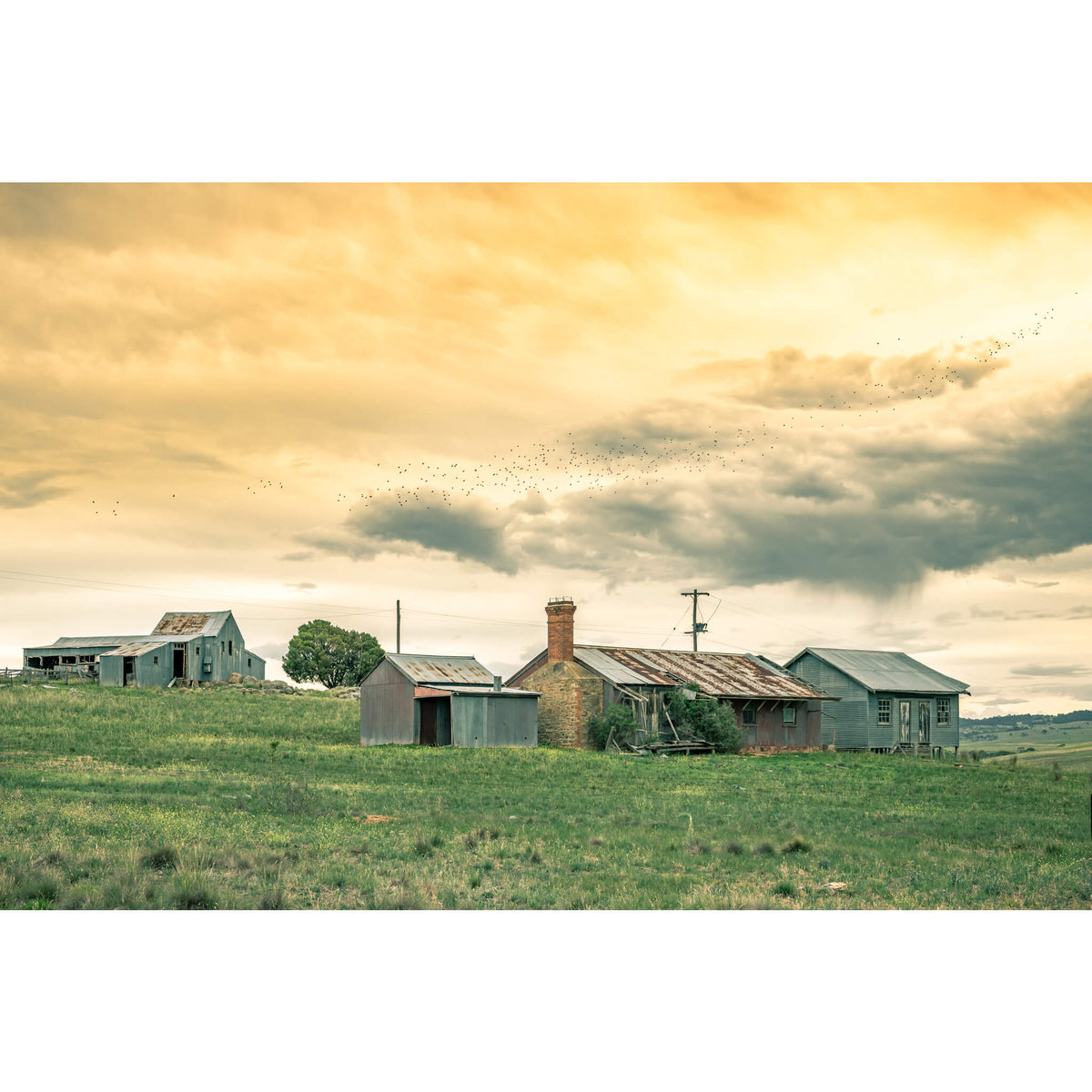 Numbla Vale Cottages & Woolshed | A Place To Call Home Fine Art Print - Lost Collective Shop