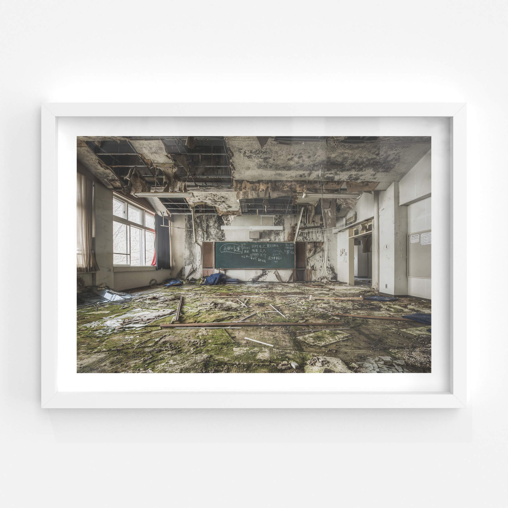 Moss Carpet | Family School Fureai Fine Art Print - Lost Collective Shop