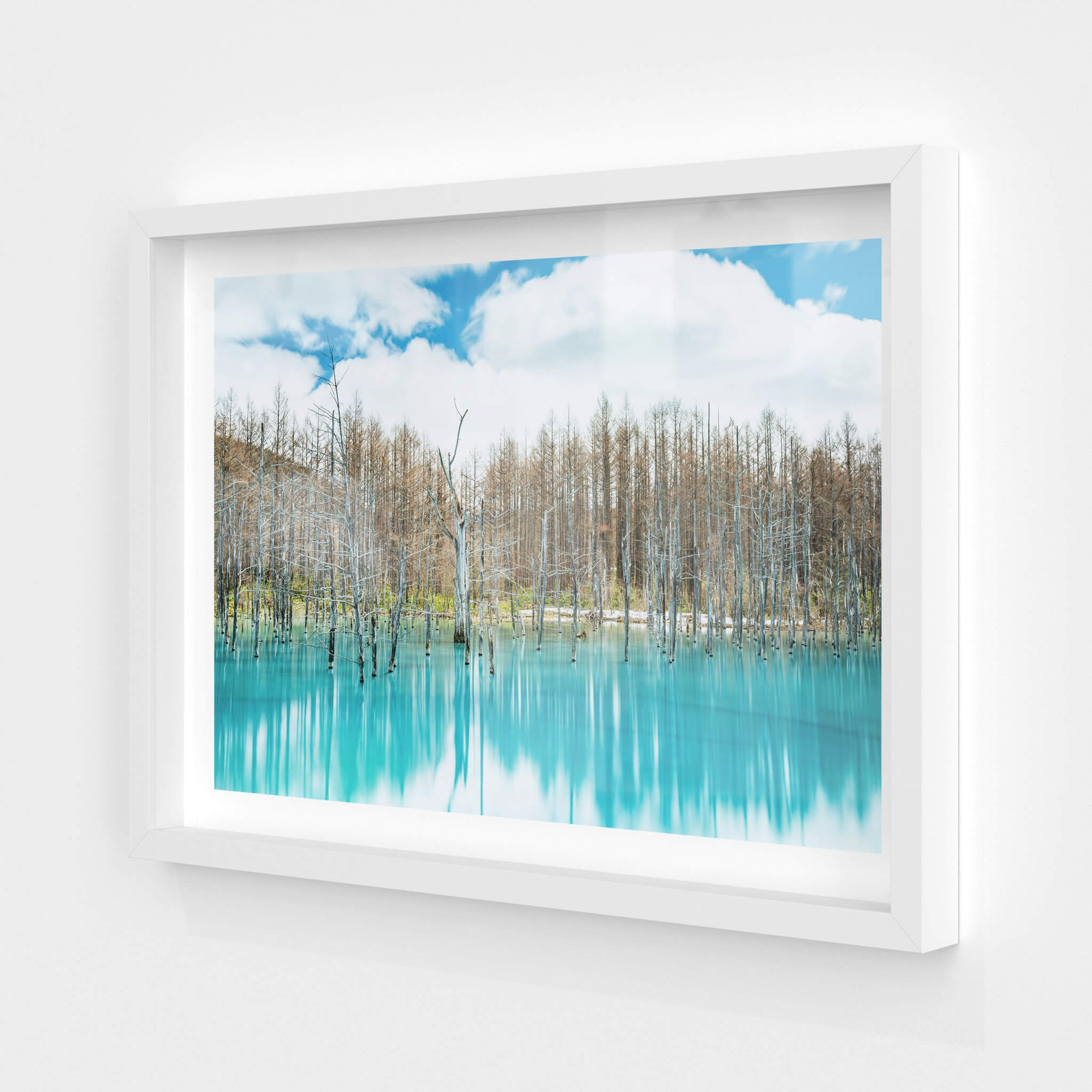 Aoiike | Landscapes Fine Art Print - Lost Collective Shop