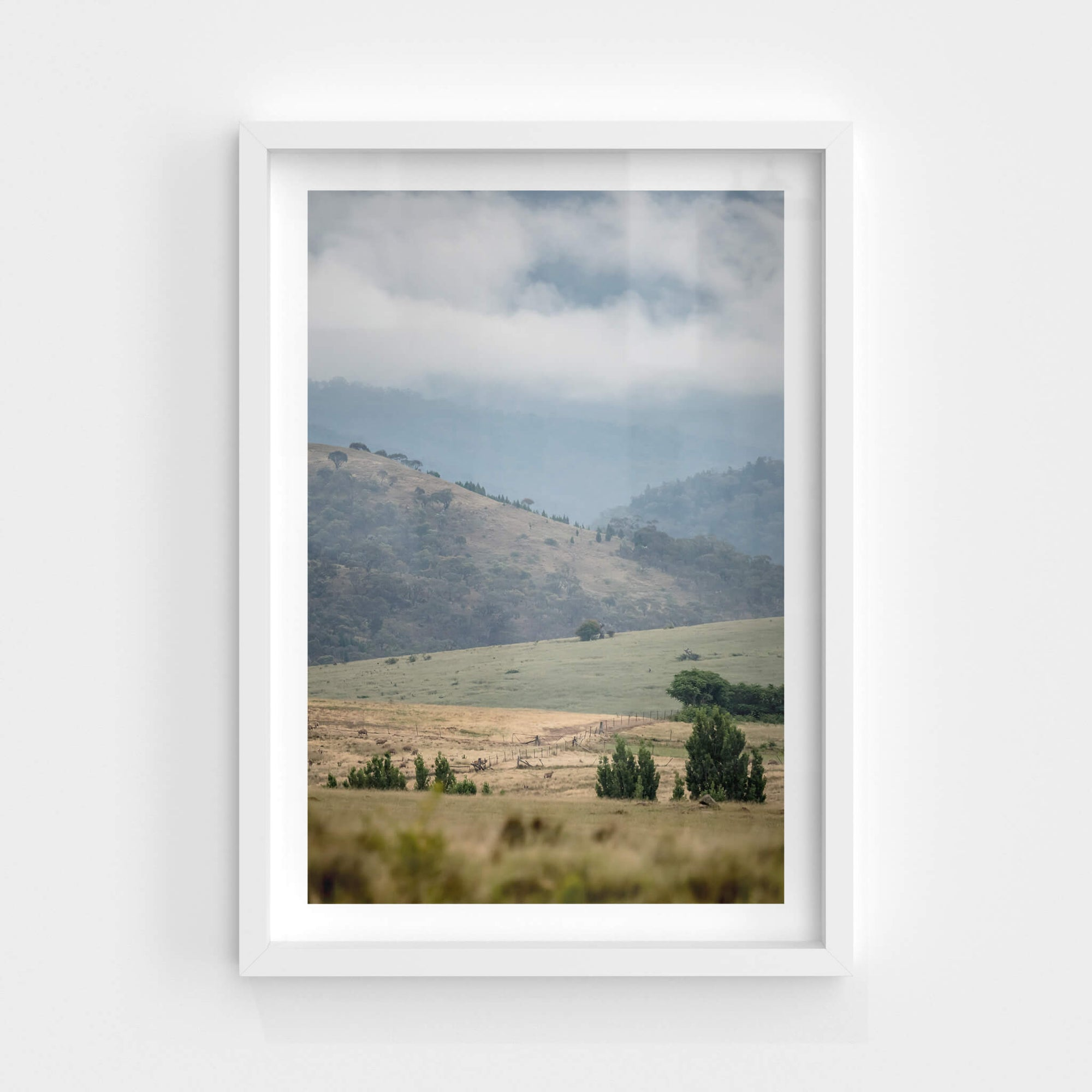 Blue Morning Ranges | Landscapes Fine Art Print - Lost Collective Shop