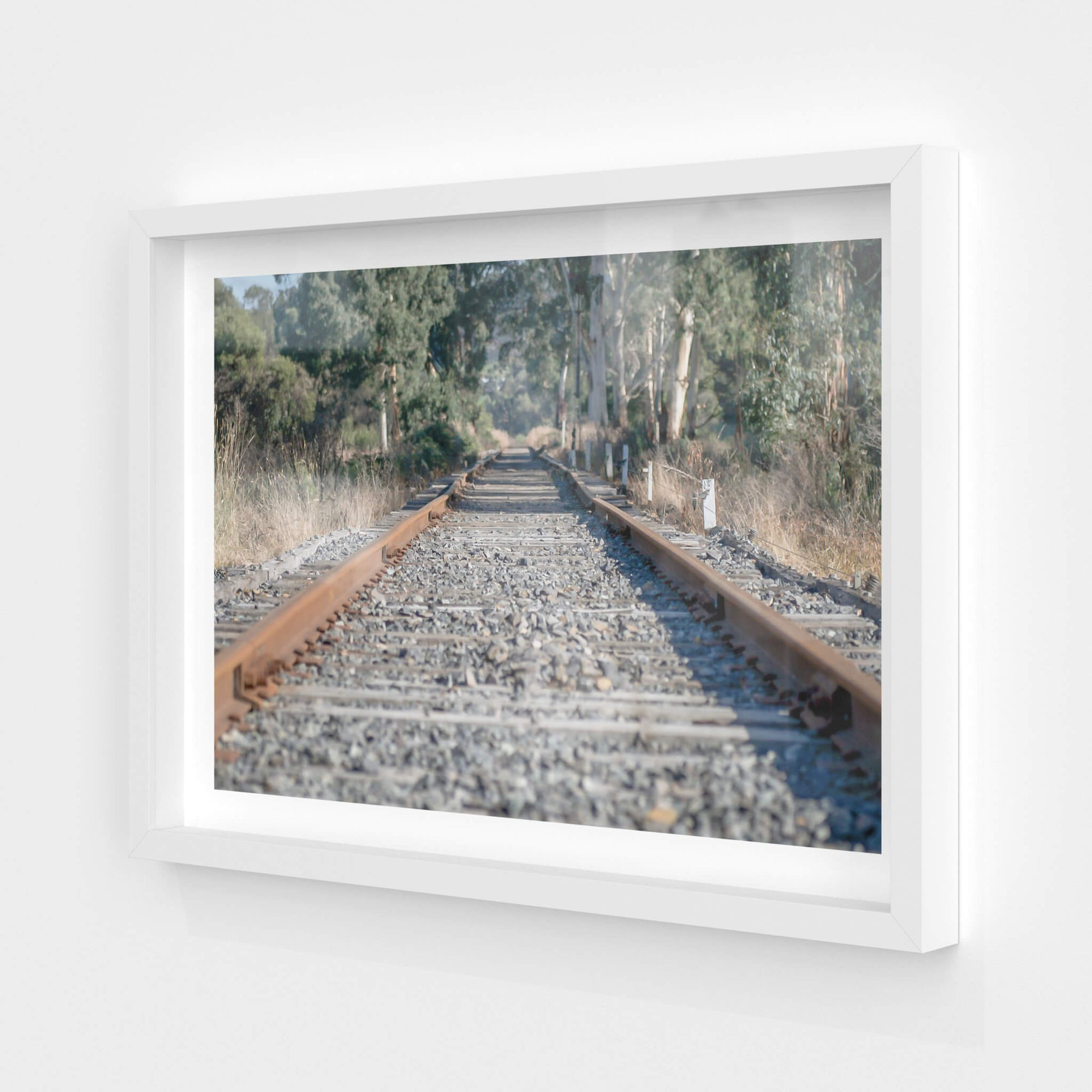Healsville Railway | Landscapes Fine Art Print - Lost Collective Shop