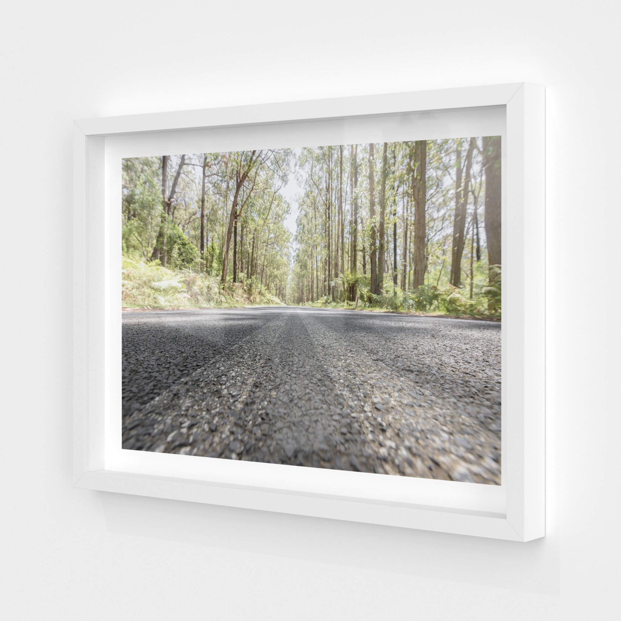 Myrtle Mountain Road | Landscapes Fine Art Print - Lost Collective Shop