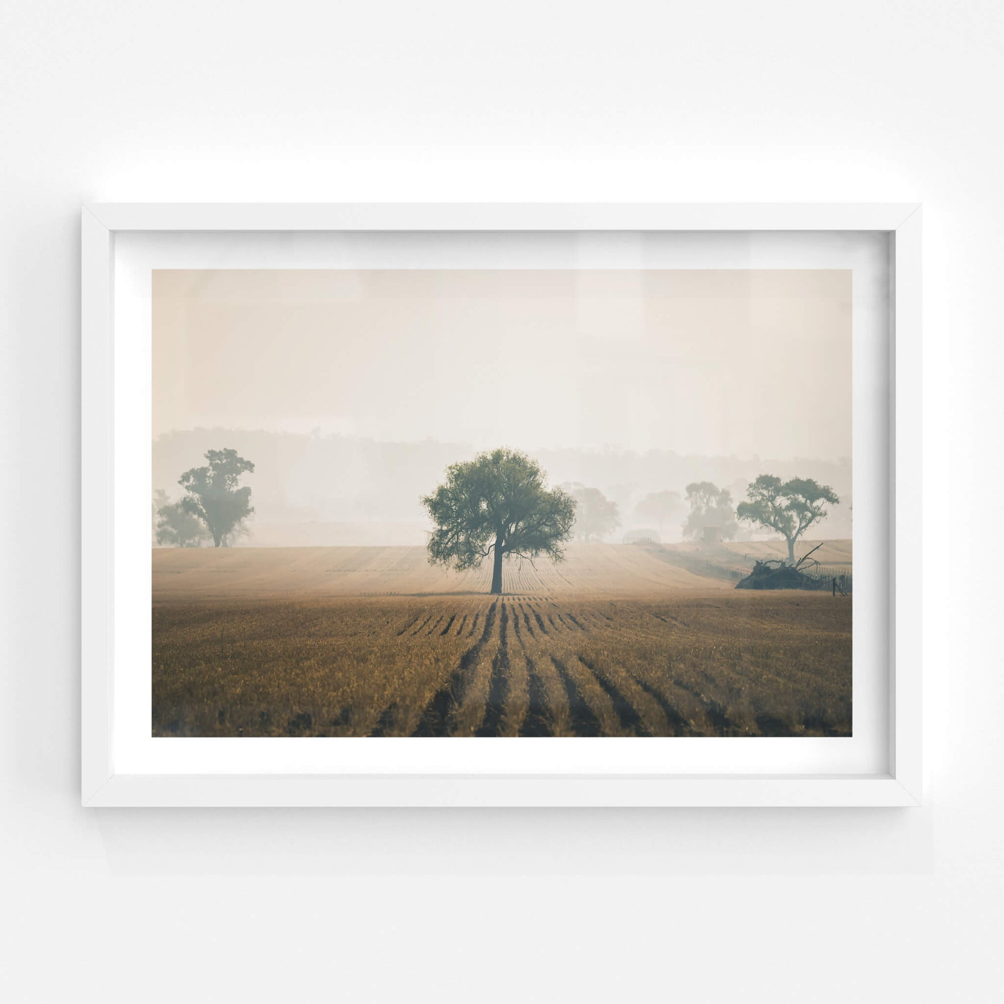 Solitude | Landscapes Fine Art Print - Lost Collective Shop