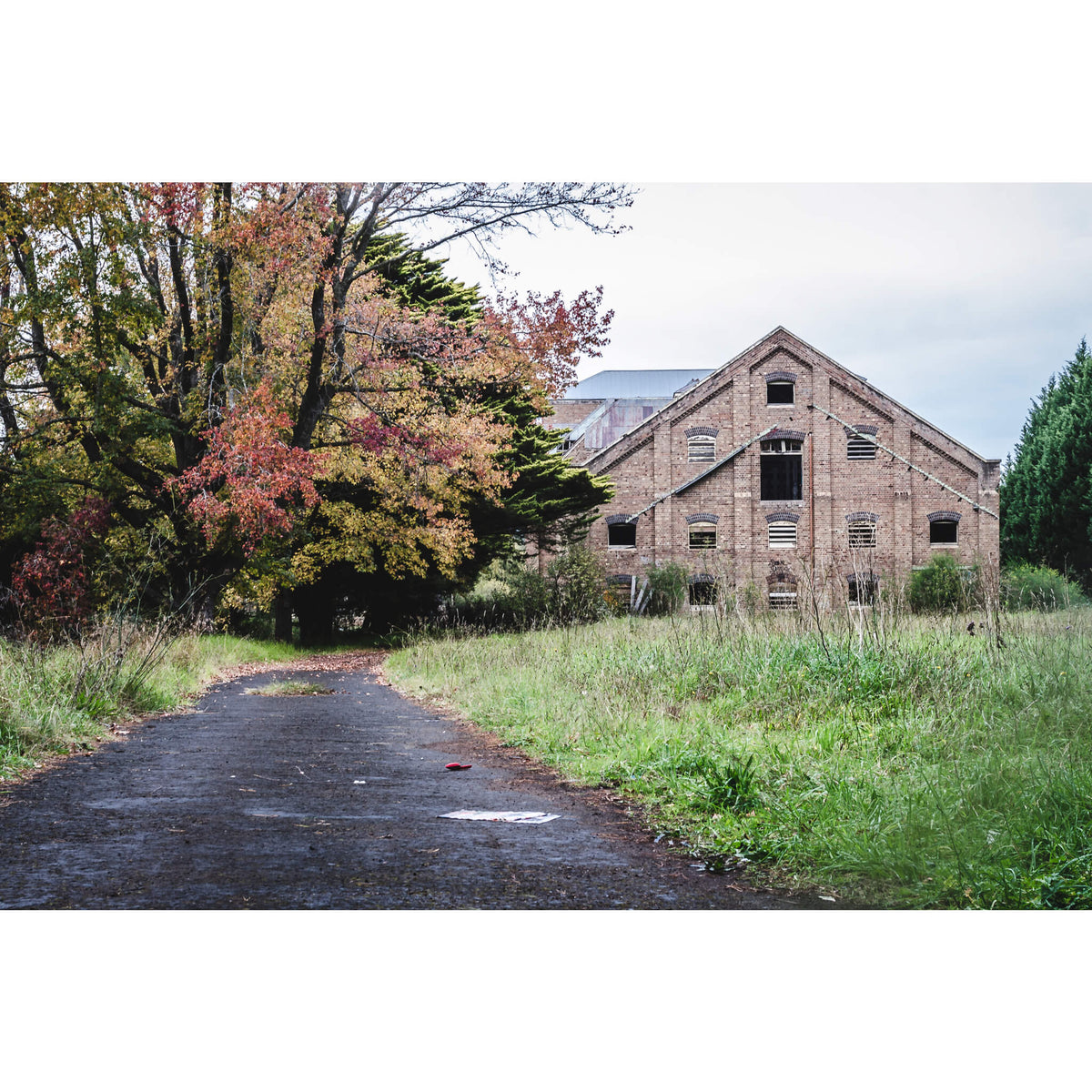 Maltings Driveway | Mittagong Maltings Fine Art Print - Lost Collective Shop