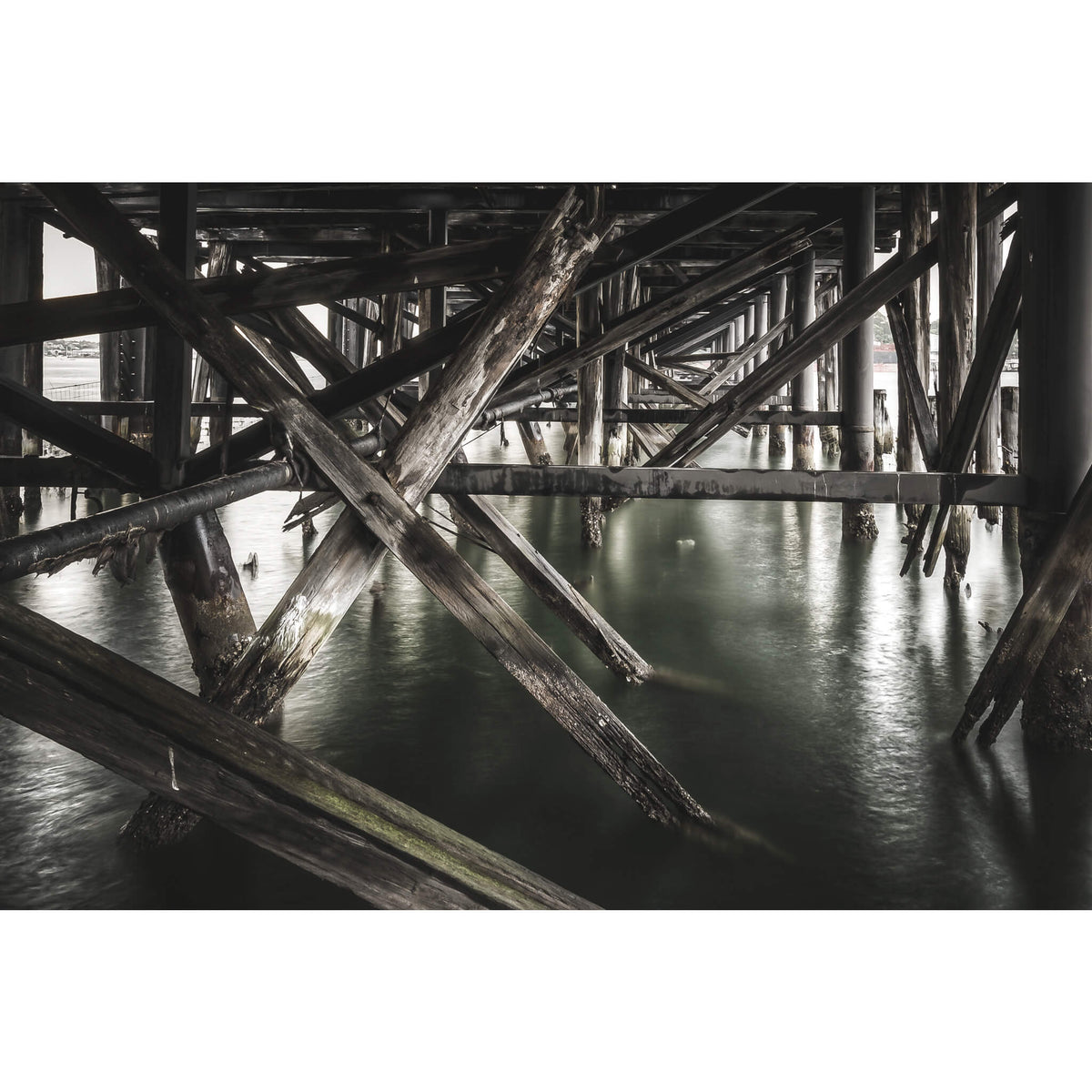 Wharf | MV Cape Don Fine Art Print - Lost Collective Shop