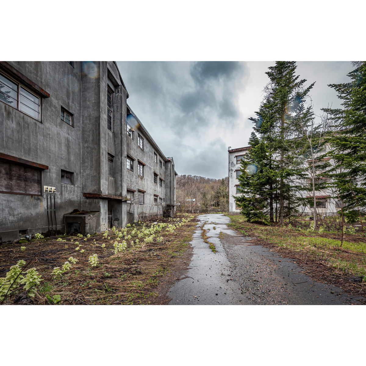 Public Housing Driveway | Streetscapes of Yubari Fine Art Print - Lost Collective Shop