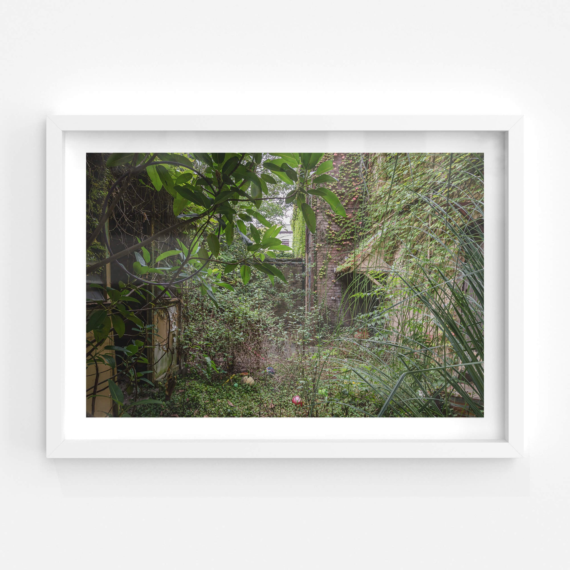 Nature Always Finds A Way | Terminus Hotel Fine Art Print - Lost Collective Shop