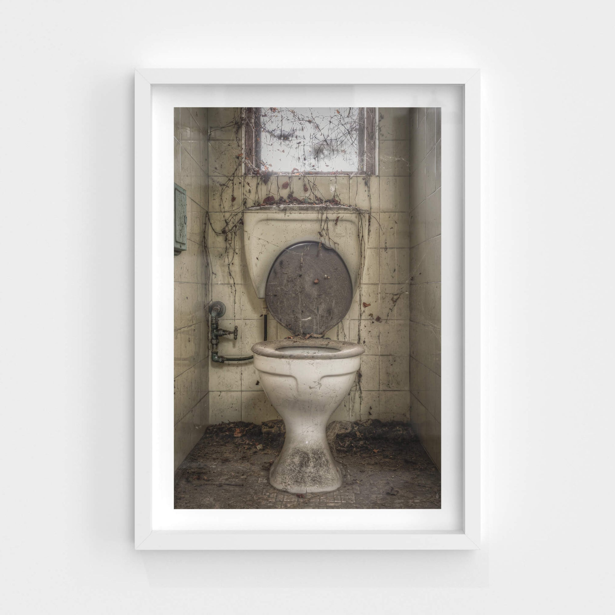 Toilet | Terminus Hotel Fine Art Print - Lost Collective Shop