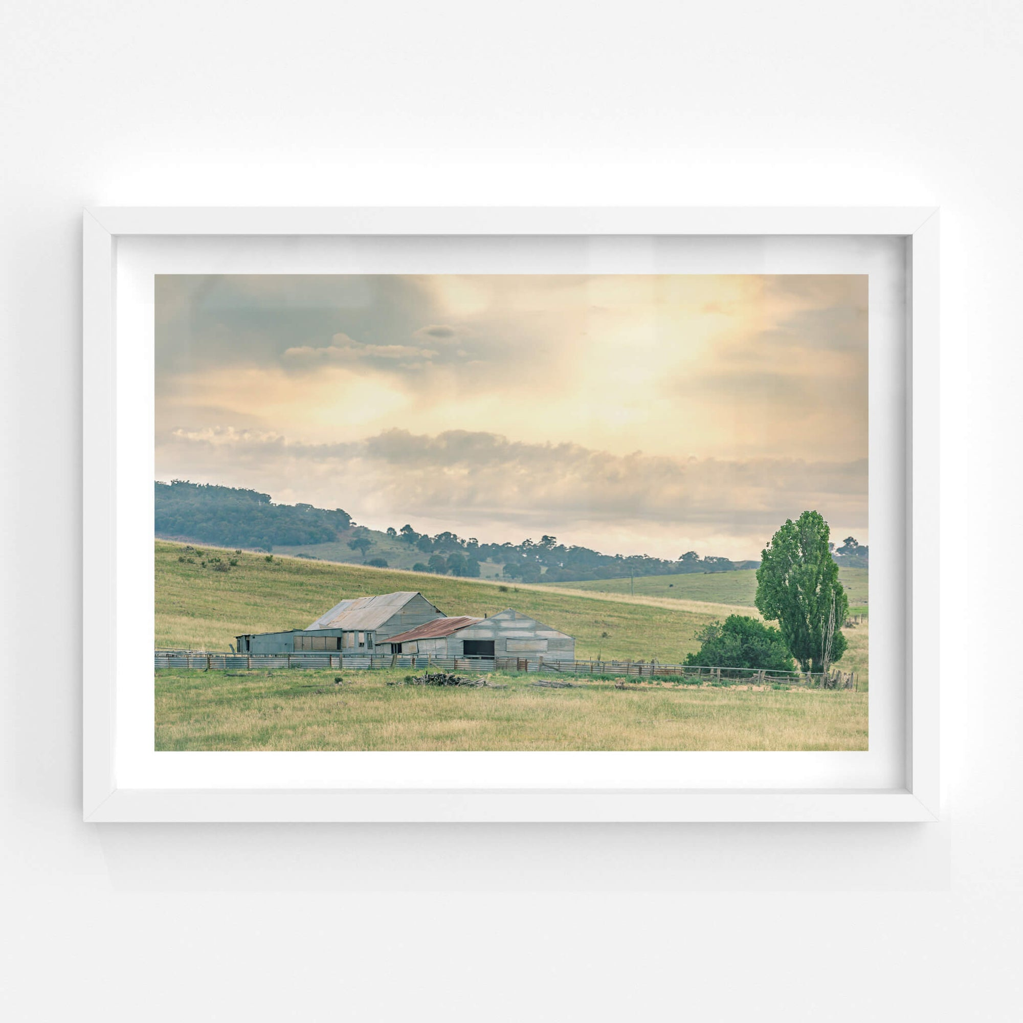 Beloka Woolshed | The Woolshed Fine Art Print - Lost Collective Shop