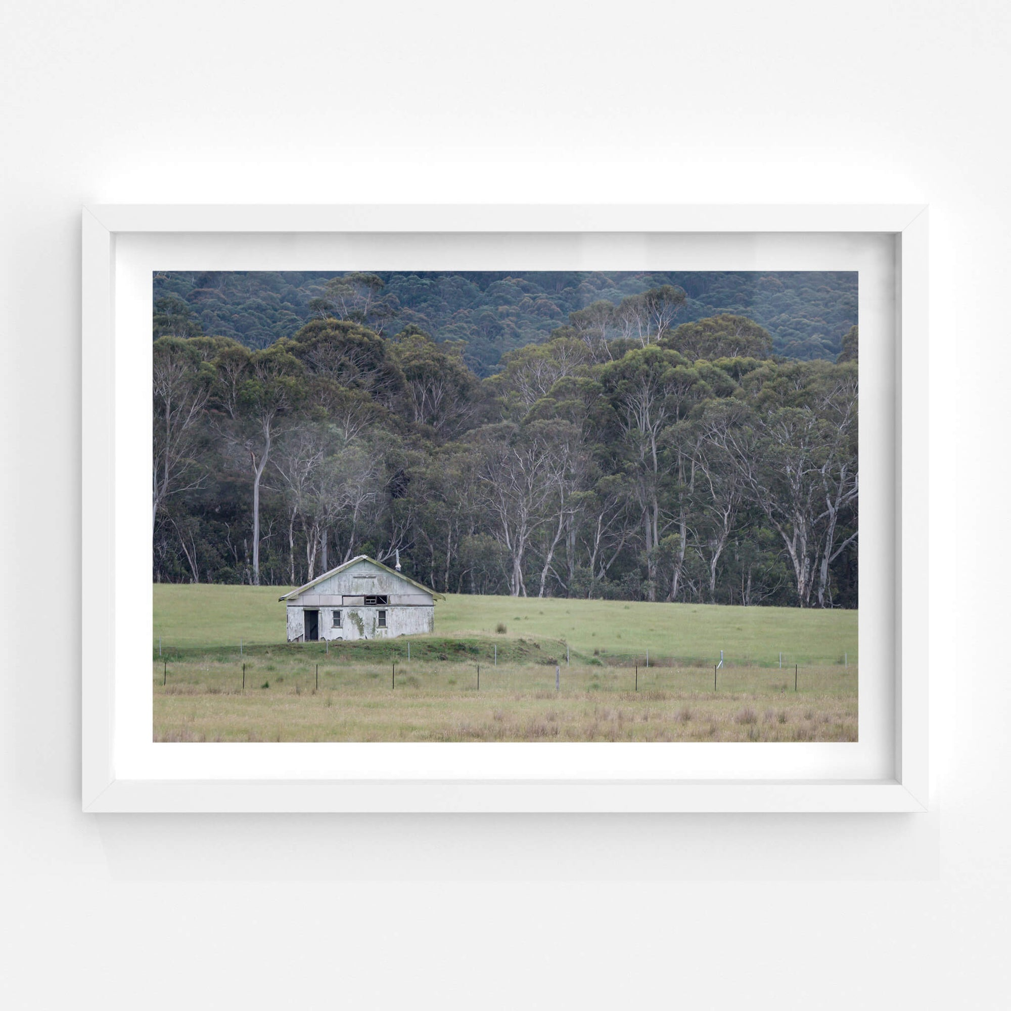 Nimmitabel Shed | The Woolshed