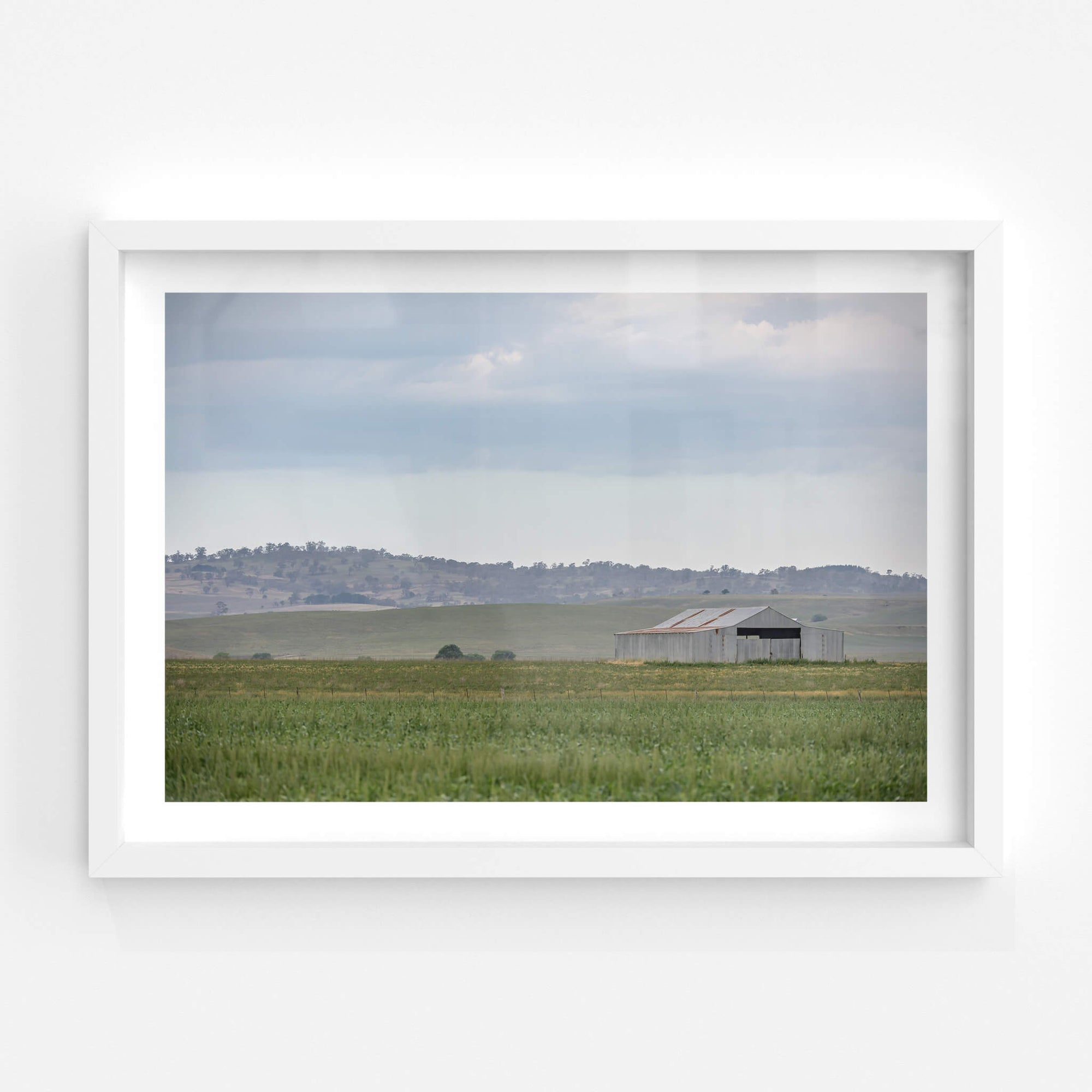 Shed In The Field | The Woolshed