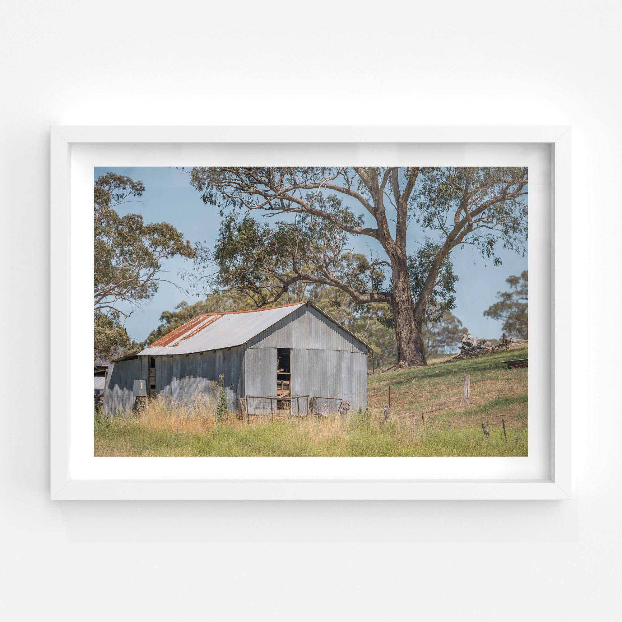Simple Shed | The Woolshed