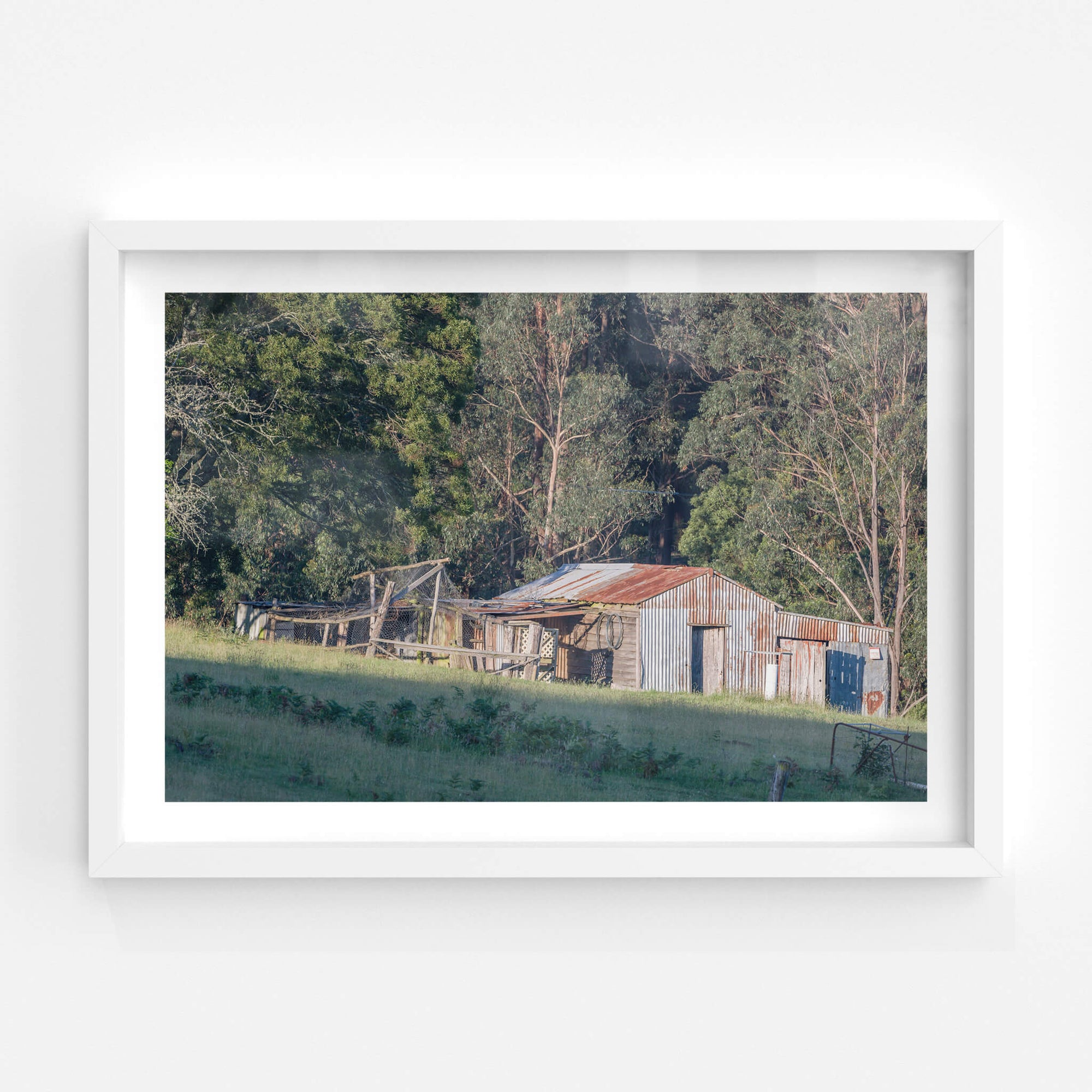 South Pambula Shed | The Woolshed