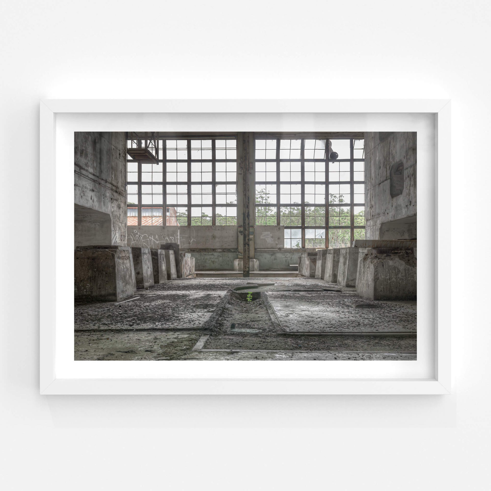 Nature Always Finds a Way | Wangi Power Station Fine Art Print - Lost Collective Shop