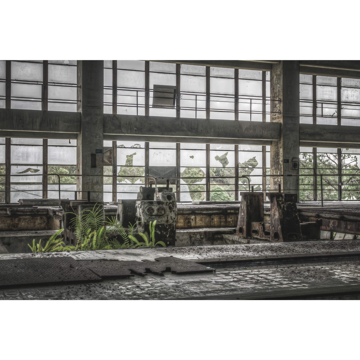 Pedestal Looking Out Towards Switch Yard | Wangi Power Station Fine Art Print - Lost Collective Shop