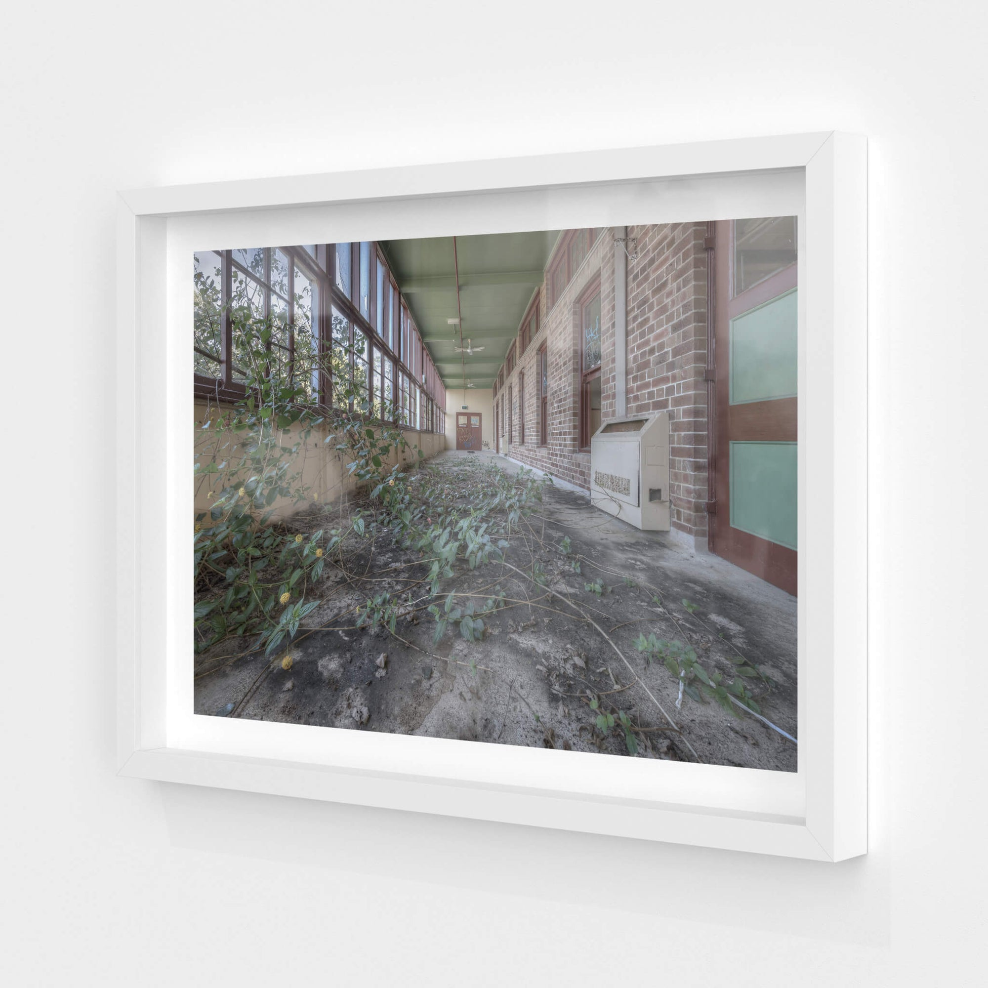 Encroach | Waterfall Sanatorium Fine Art Print - Lost Collective Shop