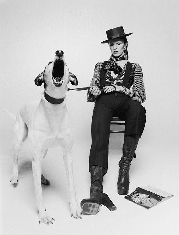 David Bowie for Diamond Dog, By Terry O'Neill.  LA MAISON REBELLE