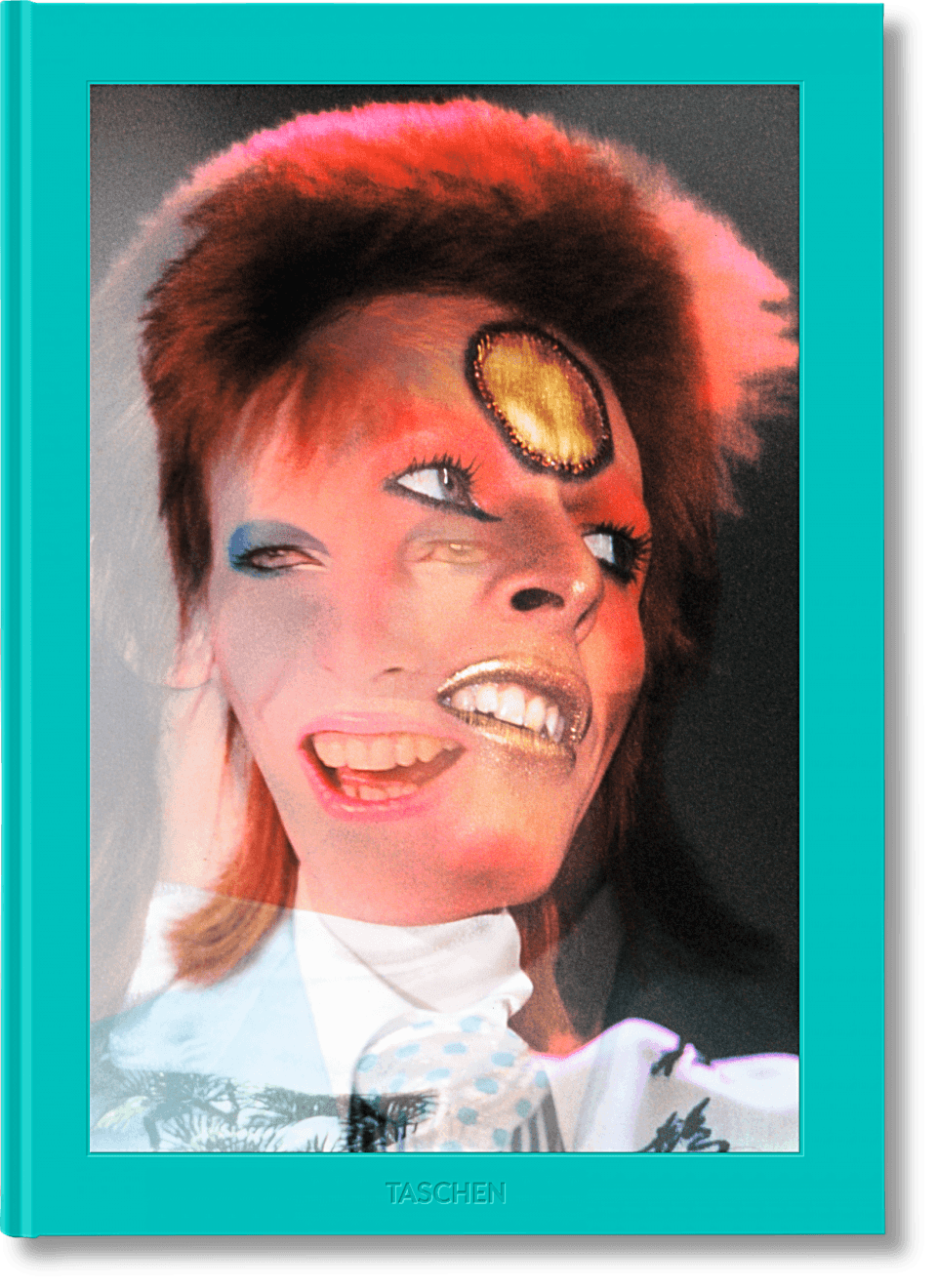The Rise of David Bowie by Mick Rock Book.  LA MAISON REBELLE