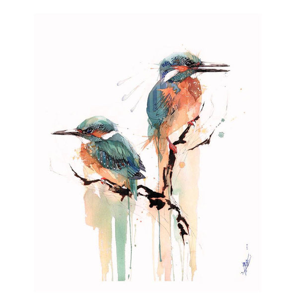 Kingfisher/Kotare