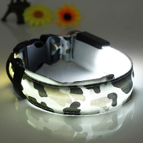 Camo LED Glow Safety Pet Collar - Teeternal - 1