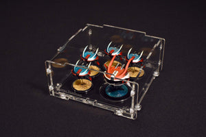 Painted miniatures in a beluga acrylic case