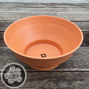 Sempervivum Mixed Bowl Kit - 275mm
