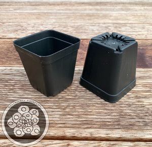 70mm Square Pot Set (24 Pots and 1 Tray)