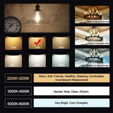 Smart WiFi Dimmable CCT ST64 8.5W LED Filament Bulb 2 x Pack