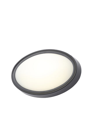 Oxford Oval LED Flush Light