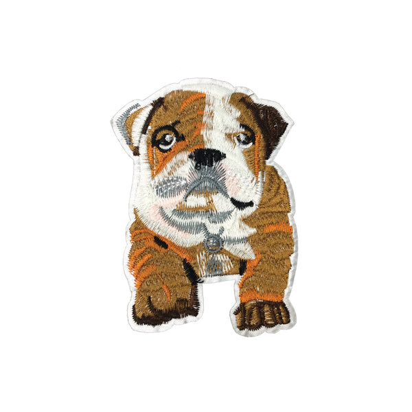 PC3559 - Brown British Bulldog Puppy (Iron On)