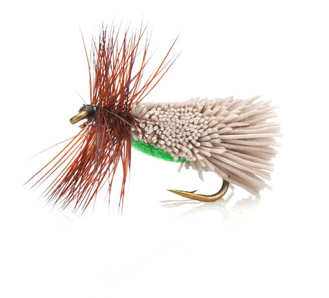 Goddards Caddis